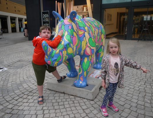 The Great Big Rhino Project and Trail