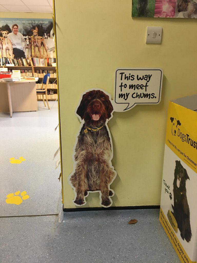 Dog's Trust Harefield