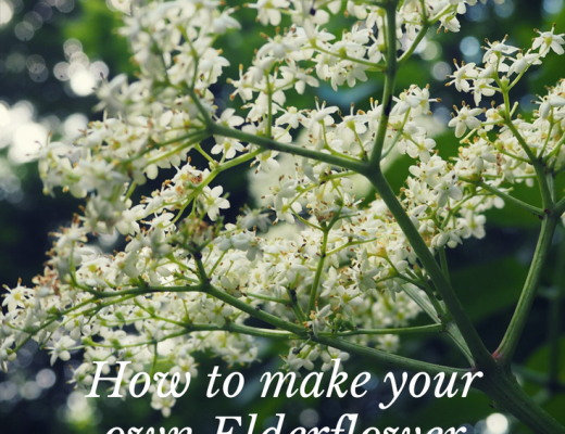 How to make your own Elderflower cordial
