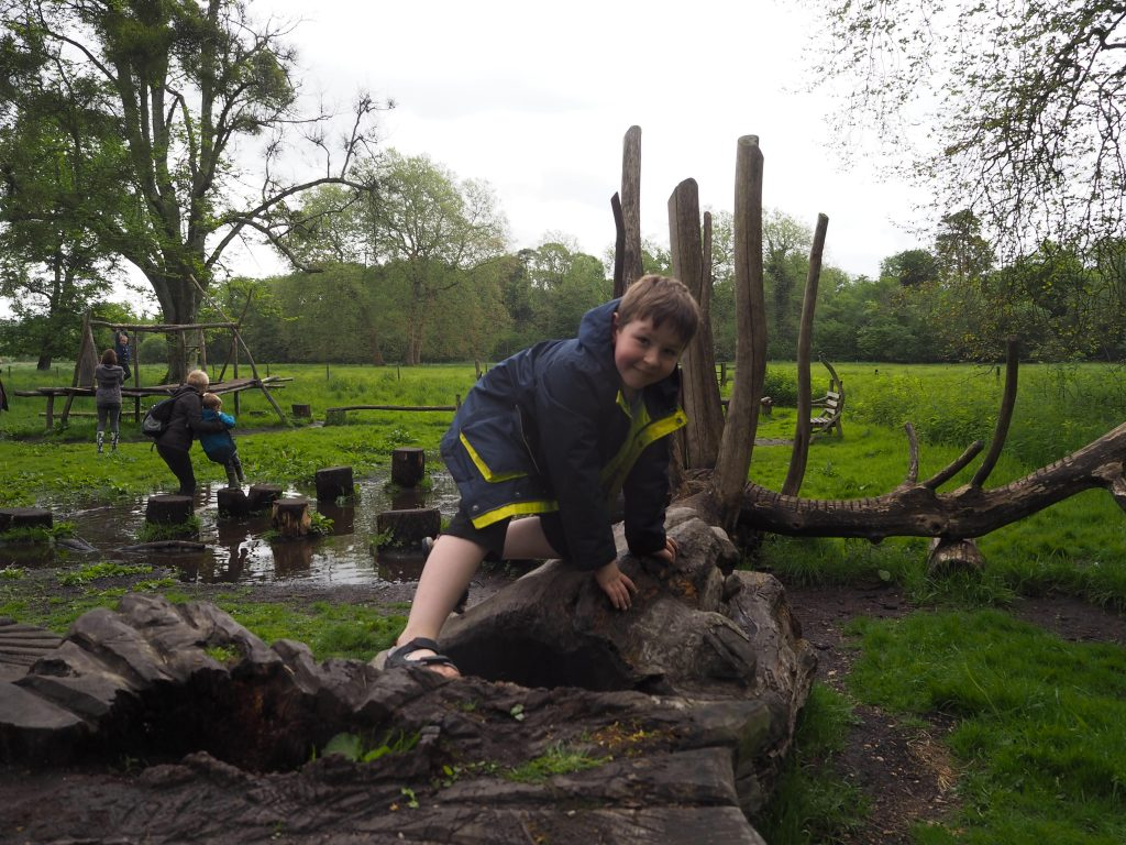 Boggy Climbing on the Wild Play trail