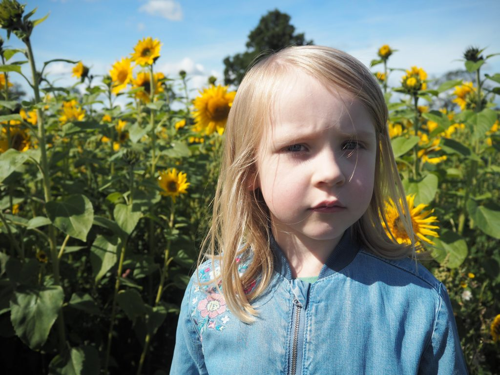 girl standing in front of sunflowers at Somerset Lavender