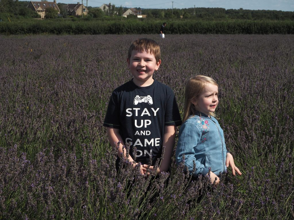 two children standing in a field at Somerset Lavender