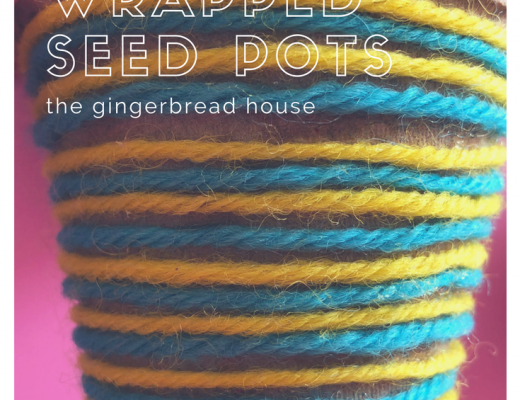 Wool wrapped seed pots craft