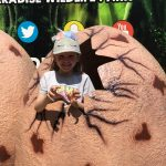 A day out with the kids at Paradise Wildlife Park