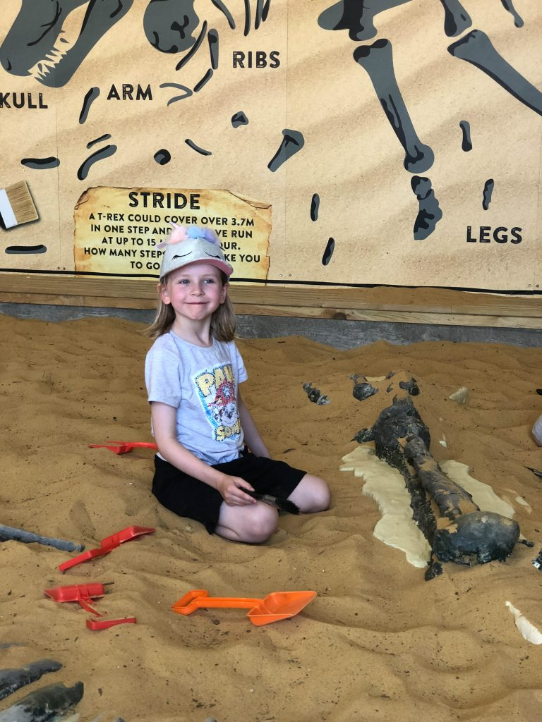 Dino-Dig at Paradise