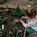 Our kid-friendly garden (which us adults love too!)