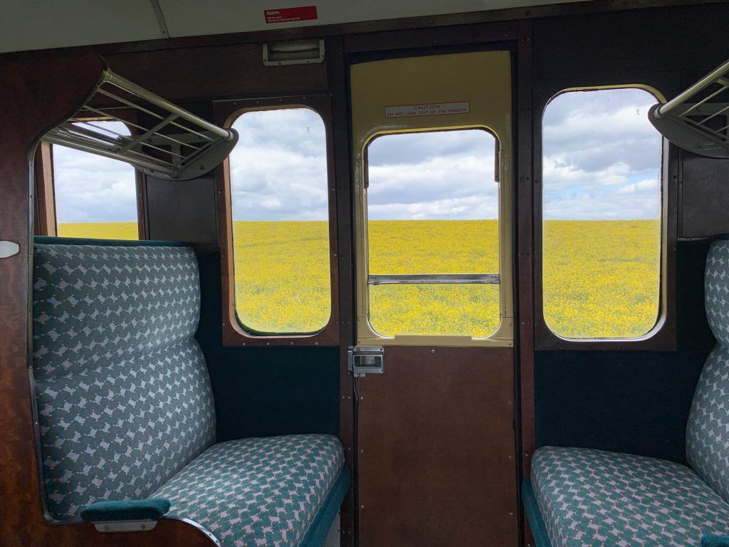 a ride on the Watercress Line part fields of rape seed