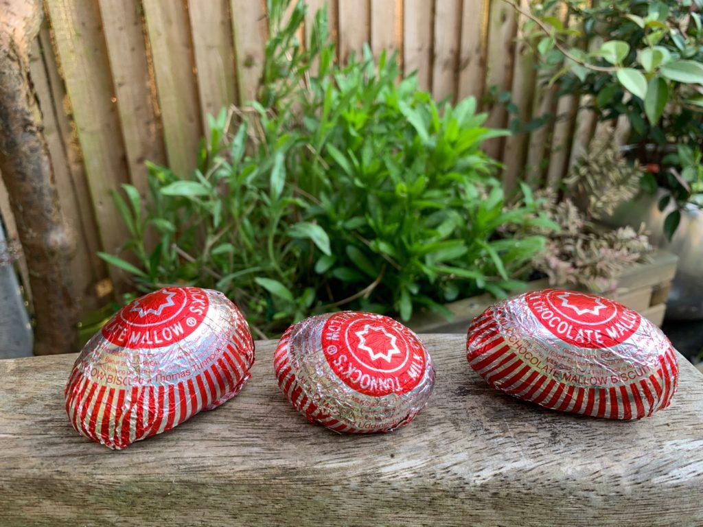 row of Tunnocks Caramel Wafer painted rocks