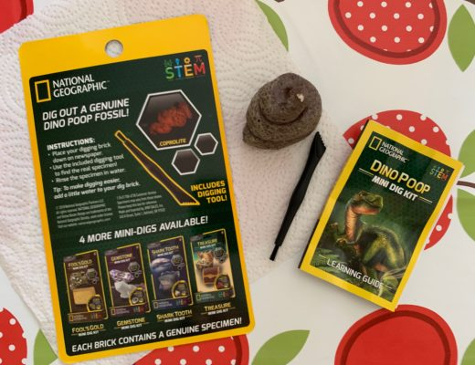 Mini Dig Kits from National Geographic