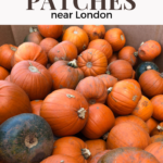Where are the best places to pick pumpkins near London?
