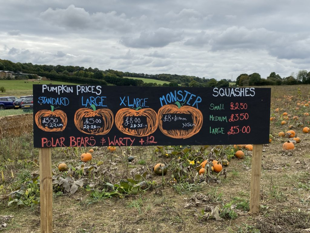 how much does a pumpkin cost?