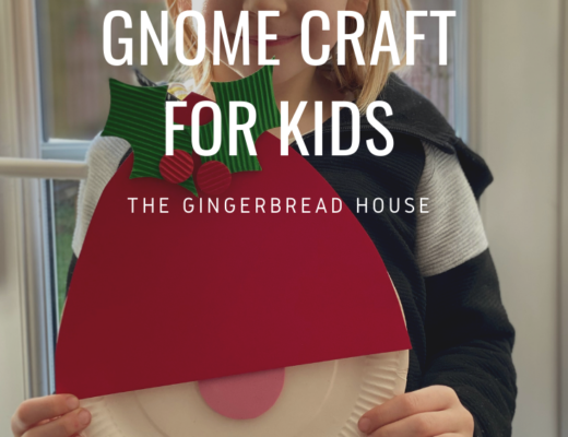 gnome paper plate craft