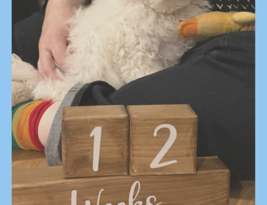 Cricut made countdown {wooden block calendar}