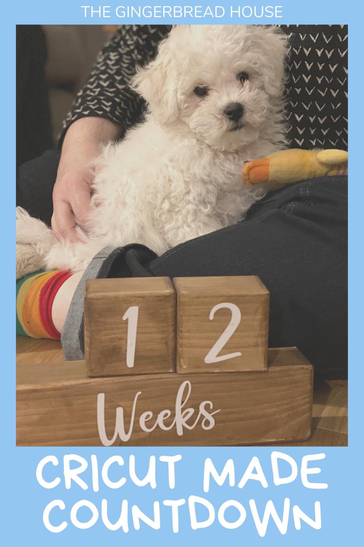 Cricut made countdown {wooden block calendar}