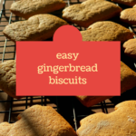 Baking with the Lidl gingerbread dough kit