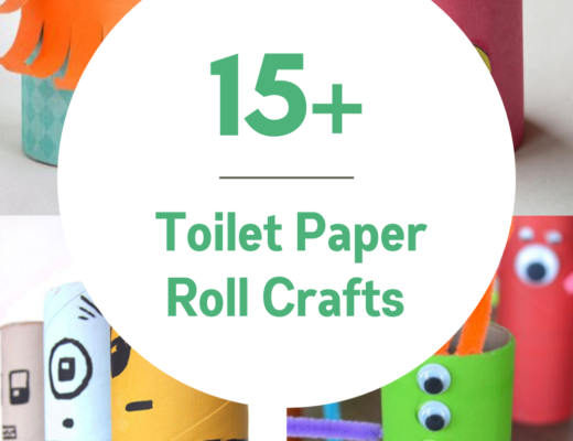15+ Toilet Paper Roll Crafts for kids