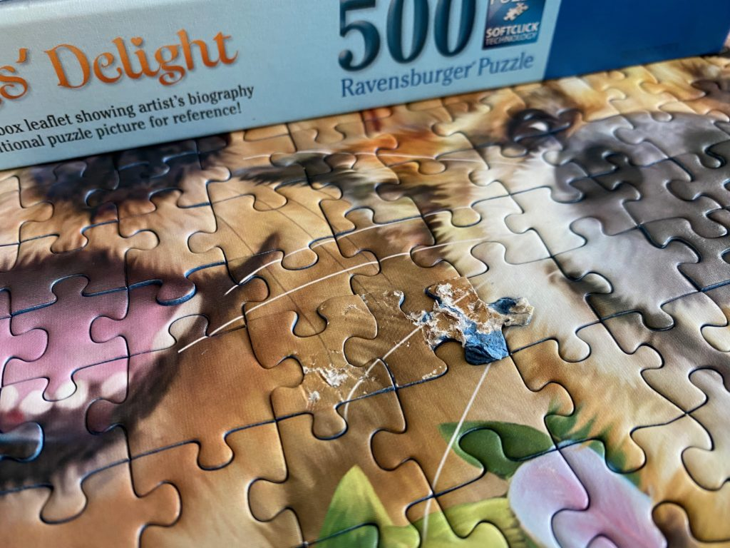 puppy ate the jigsaw puzzle