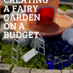 Creating a fairy garden on a budget