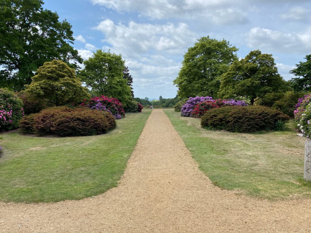 Langley Park view to Windsor Castle