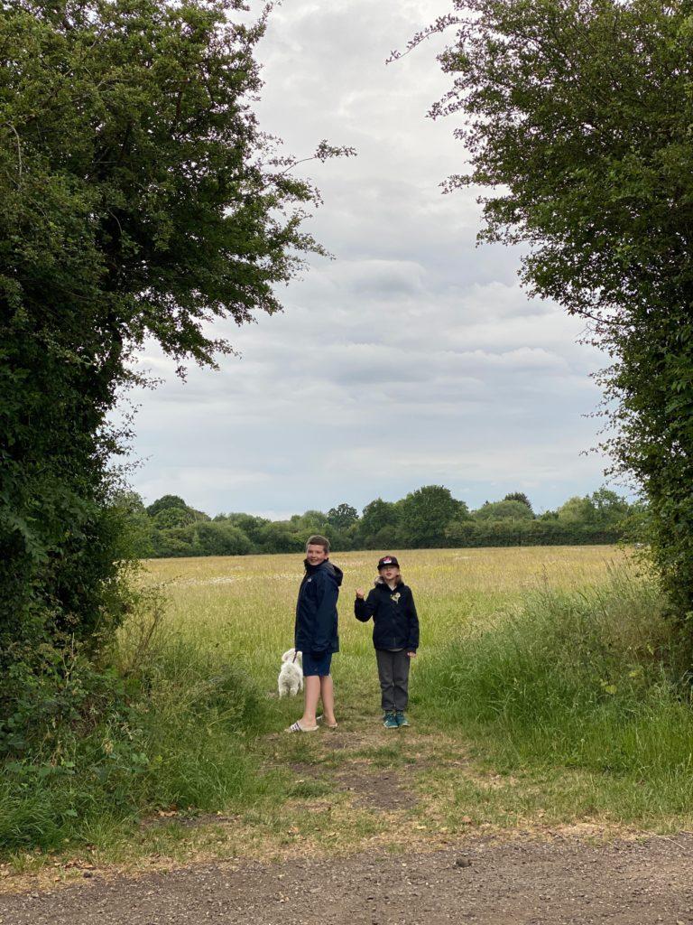 looking for wildflower meadows in west London
