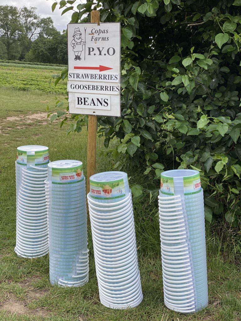 PYO buckets