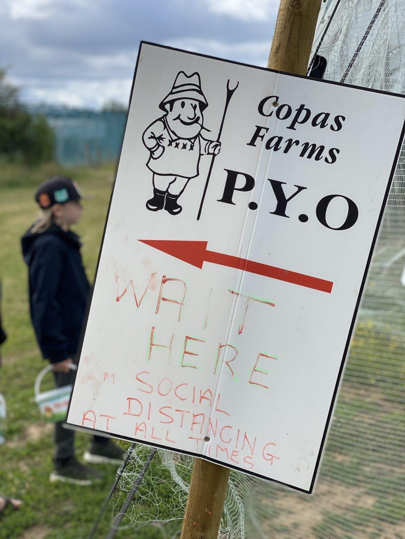 social distancing at Copas