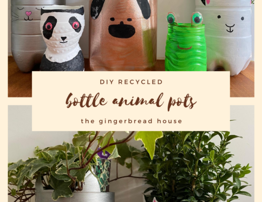 DIY recycled bottle animal plant pots