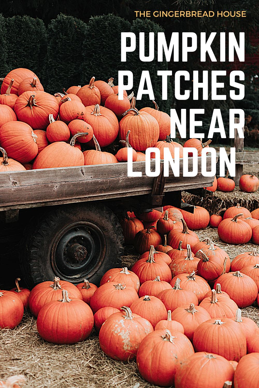 Pumpkin patches near London {2020 update}