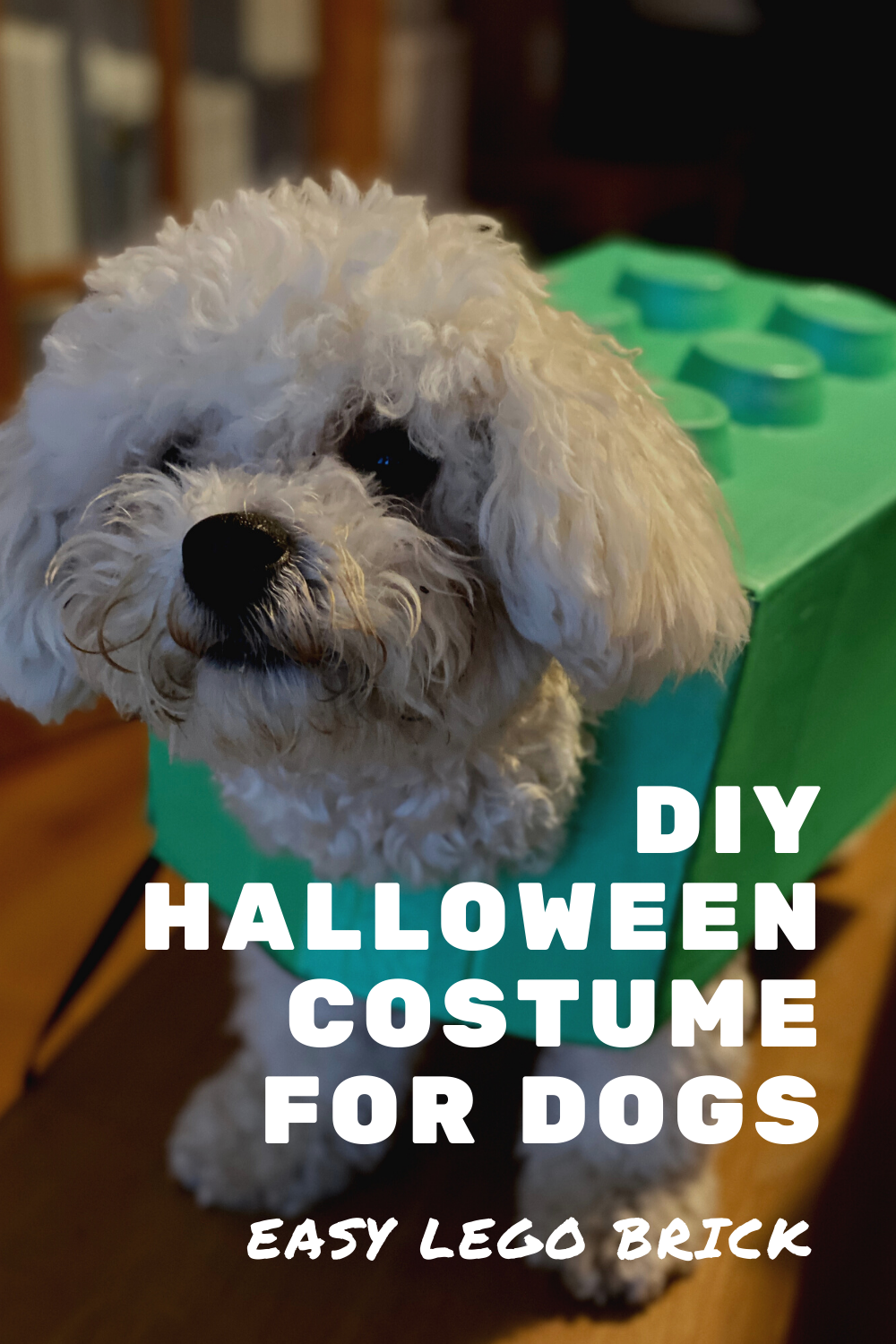 How to make a lego brick Halloween costume for dogs