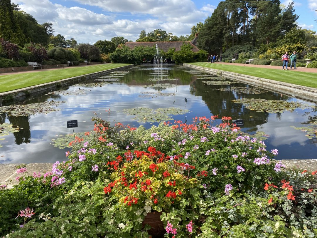 A trip to RHS Wisley with kids
