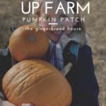 A trip to The Pop Up Farms' Pumpkin Patch