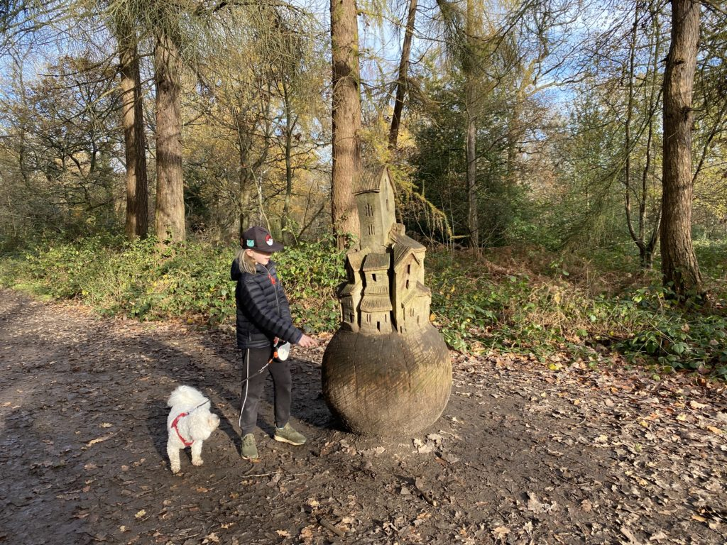 looking for painted rocks Oxhey Woods Sculpture Trail