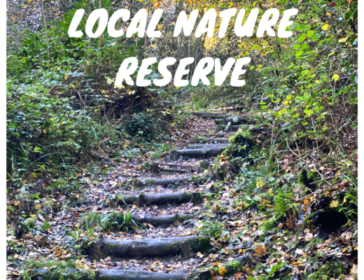 Northmoor Hill Local Nature Reserve