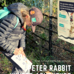 Winter adventures with The Peter Rabbit Trail at Hughenden Manor