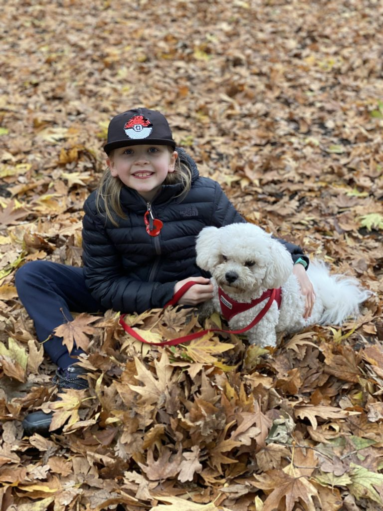 dog walking at Osterley House and Gardens