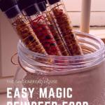 Easy magic reindeer food tubes