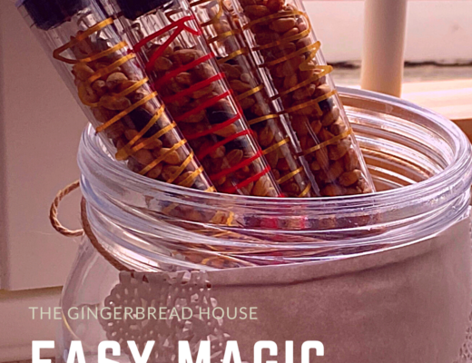 Easy magic reindeer food tubes