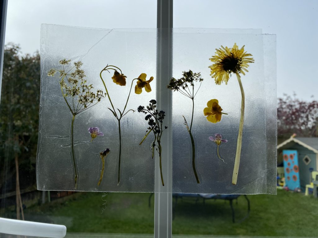 Pressed Spring flowers suncatcher