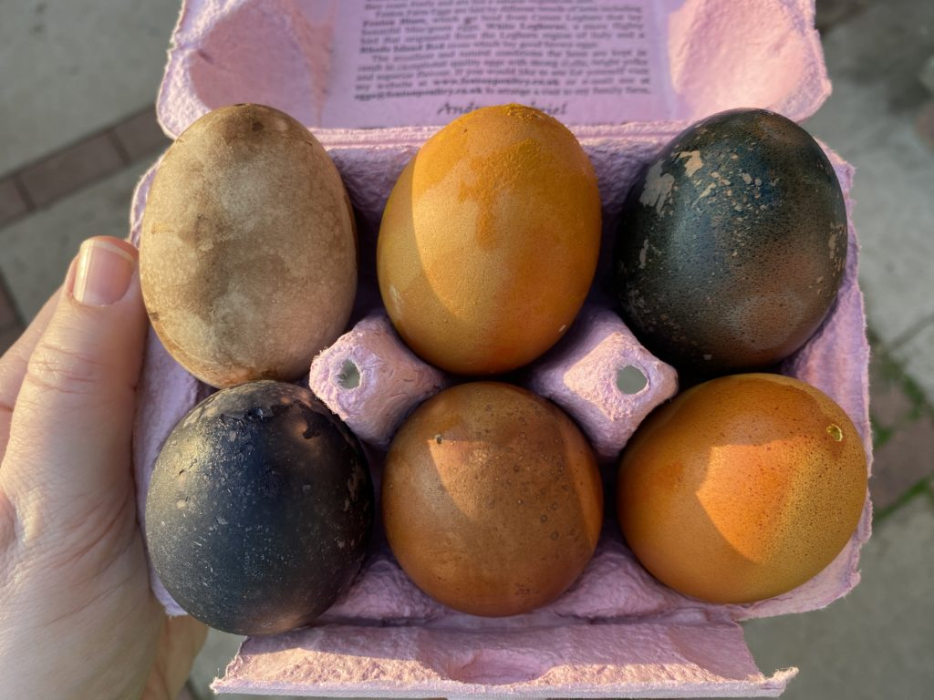 using natural dyes to dye eggs