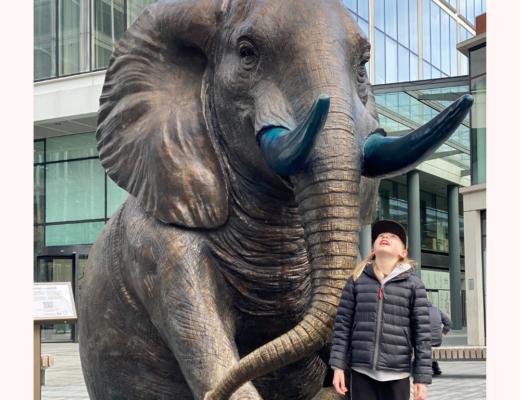 Elephant trail at Spitalfields Market London