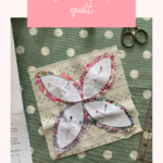 'The Summer Sampler'  Block of the Month Club {update 1}