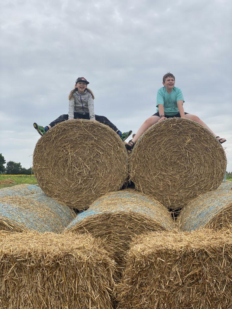 hay bales at the Pop Up Farm