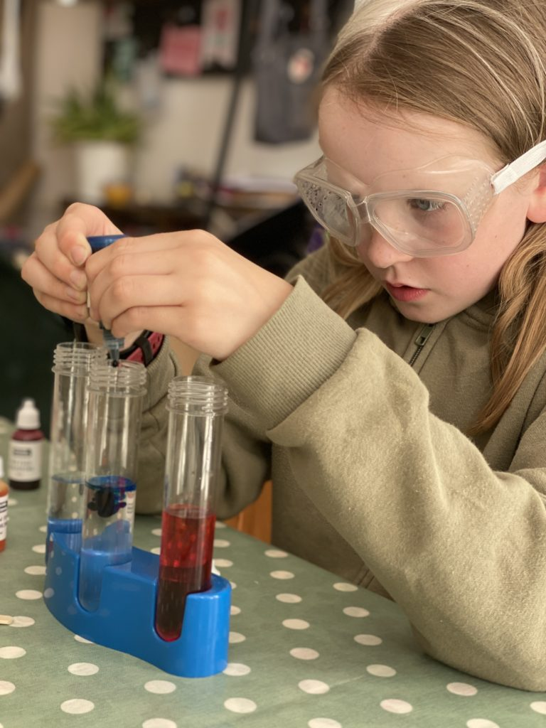 fun science experiments at home